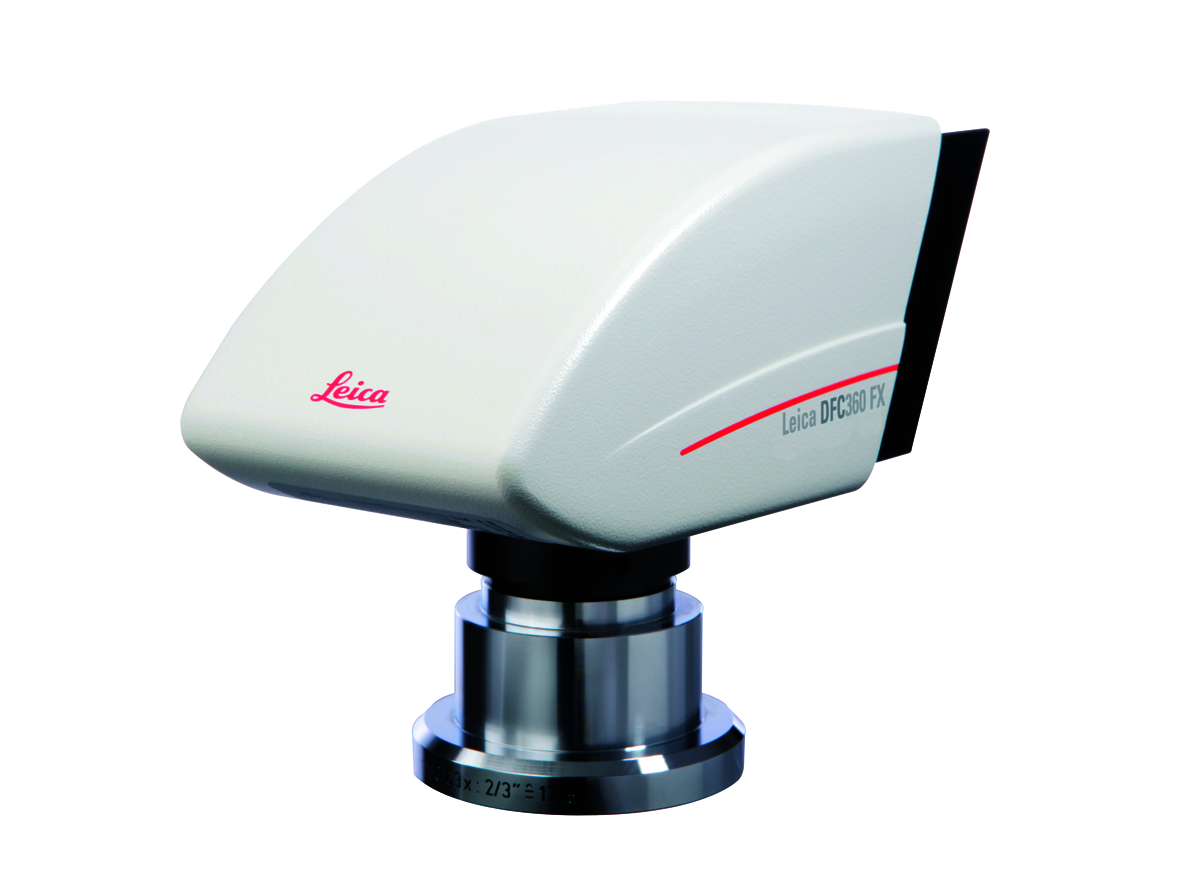 The Leica DFC360 FX provides excellent results in live cell imaging.